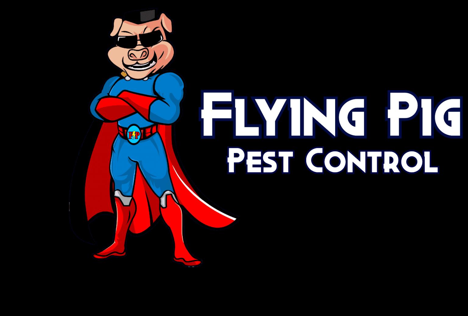 Flying Pig Pest Control